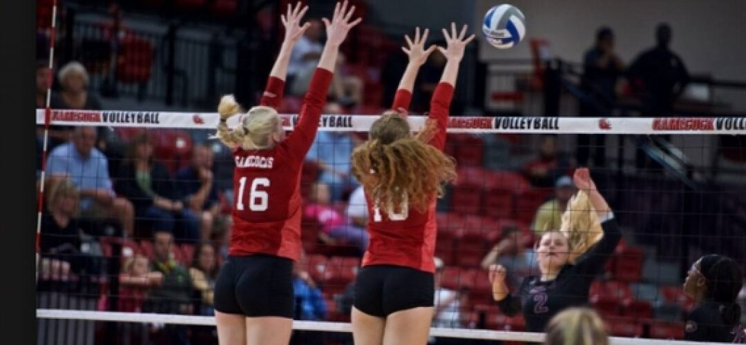 Women's Volleyball Scholarships by the Numbers